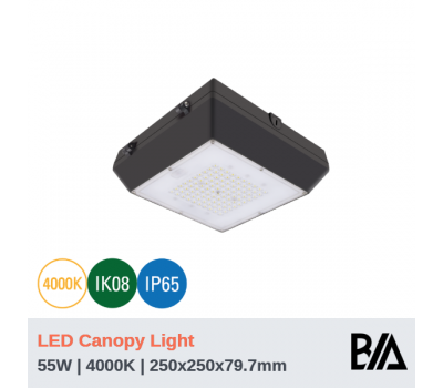 BOXY - 55W | LED Canopy Light | 4000K